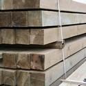 Drewno szorstkie